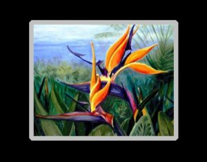 Bird of Paradise Art Prin