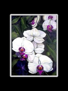 White Phalaenopsis Orchid Print