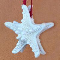 Dual Star Starfish Christmas Tree Ornament