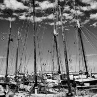 Schooner Wharf Matted Photo