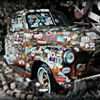 Conch Cruiser Matted Photo